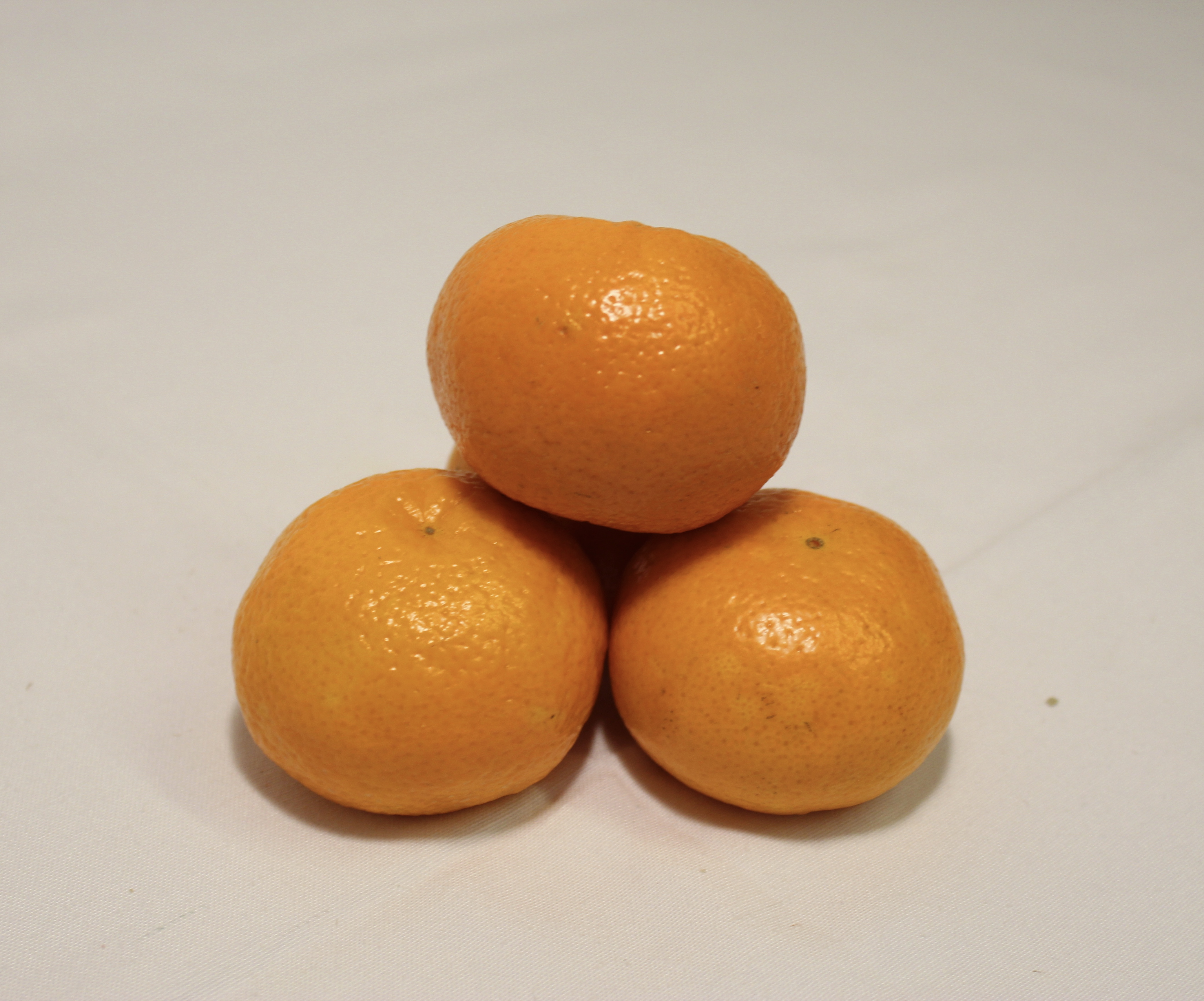 Clementine Orrì